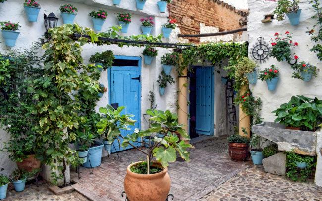 Patio Cordobés -typical courtyard